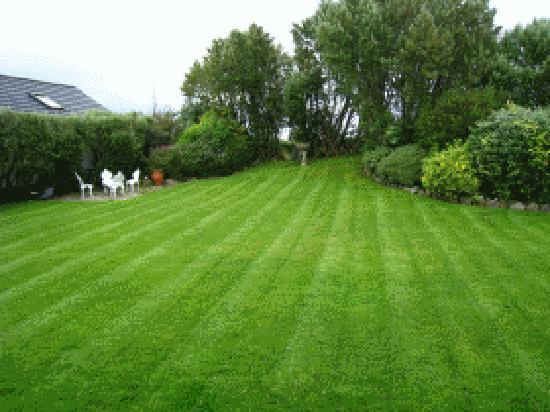An Corrach Mor: Garden