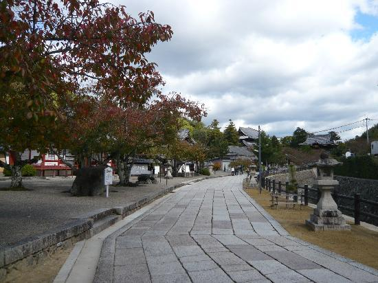 Kokawadera Temple : 整備された参道