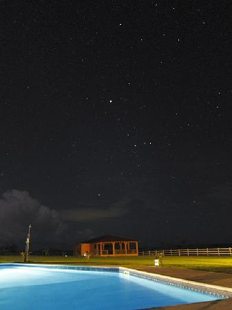 Hector's by the Sea: View of the night sky from the pool