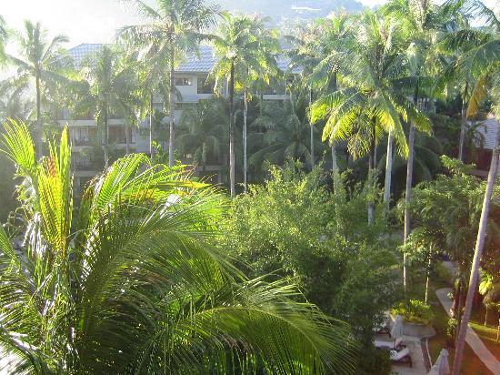 Novotel Phuket Surin Beach Resort. : view from balcony