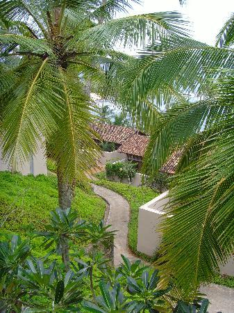 Amanwella: Chemin menant à la plage