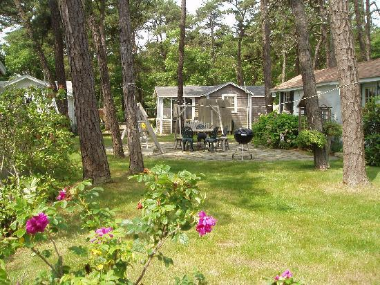 Yarmouth Country Cabins: cabins on 5 acres of beautiful natural grounds