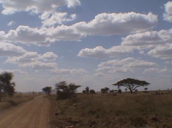 Serengeti Hippo Pool: Cielo