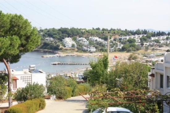 Ayvalik Picture