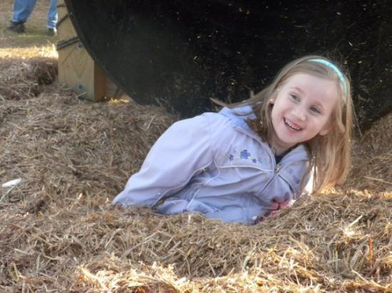 Hay slide in Anderson, SC (Annika 6 years old)
