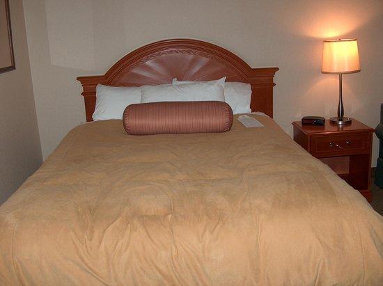Hotel Blackfoot: queen bed