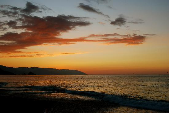 Hotel Playa Fiesta: Nightly scene