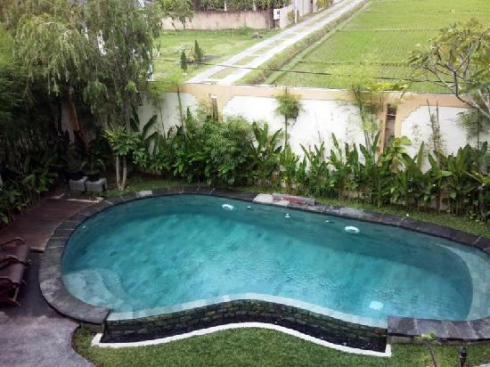 Junjungan Ubud Hotel and Spa: This is the size of the pool