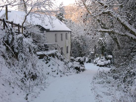 Spring Cottage B&B: Winter at Spring Cottage