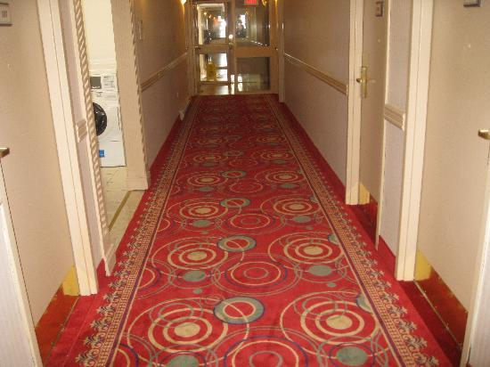 Super 8 Cambridge: hallway