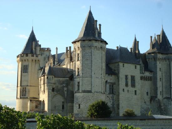 Le Lamartine : Chateau de Saumur à 300m du Lamartine