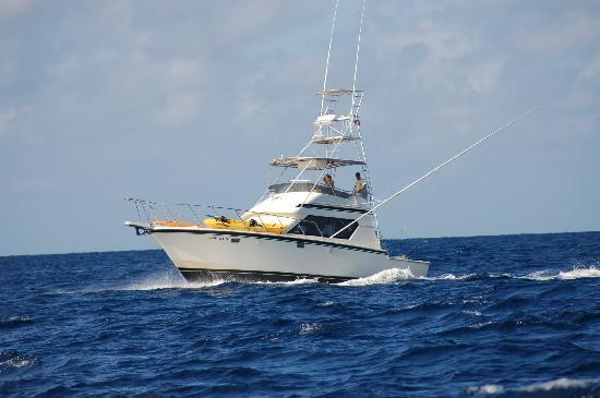 Parc national de Biscayne, Floride : Top gun Boca Chita Charter