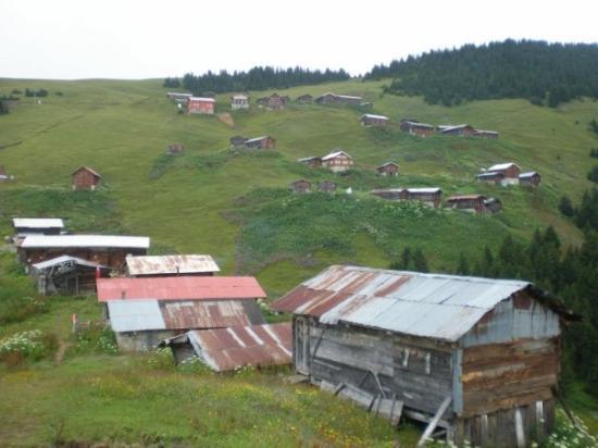 Rize, Türkei: Pokut Plateau.