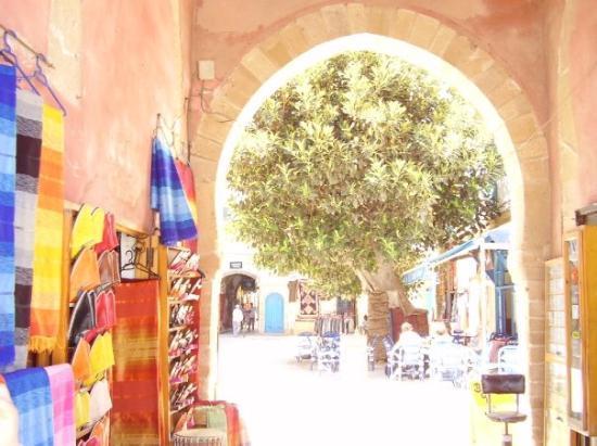 Essaouira Photo