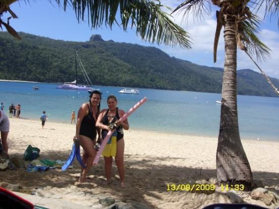 snorkeling at hook island