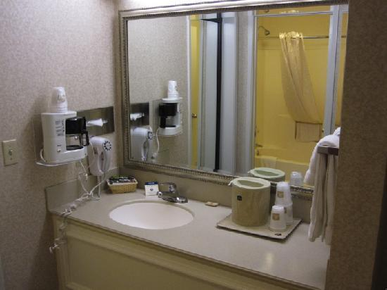 Best Western Plus Orange County Airport North: Updated sink area