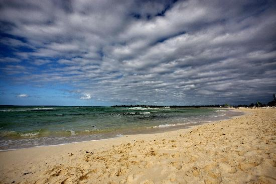 Hotel Brisas Covarrubias: beach2