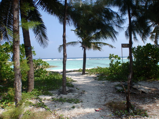 Kaafu Atoll: The beach