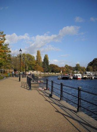 Zdjęcie Twickenham