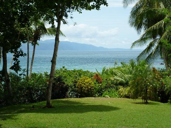 Casa Bambu Resort : View from the porch