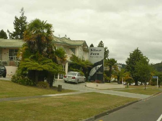 Silver Fern Rotorua - Accommodation and Spa : Silver Fern