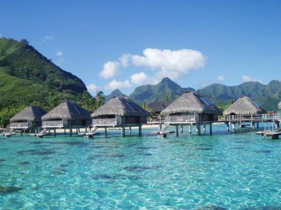 Moorea, Polinesia Francesa: sveglia mattutina.. 6.00 am i colori del mare sono indescrivibili..le foto non rendono la giusti