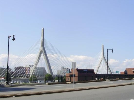 Leonard P. Zakim Bunker Hill Bridge : Zakim Bridge