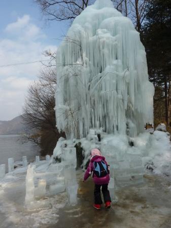 Chuncheon, South Korea: The iced tree...so amazing!! @Nami Island 南怡島