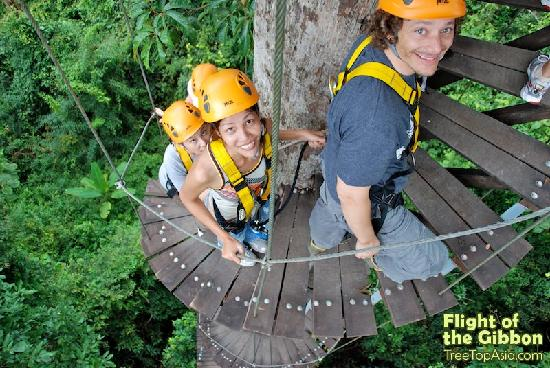 Flight of the Gibbon: Experience a Once in a Lifetime Adventure in Thailand