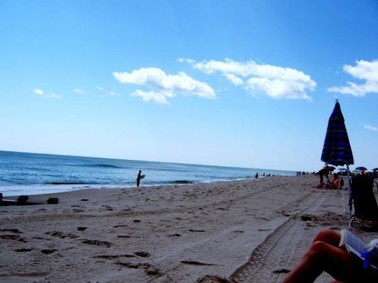 Long Beach Island : life's a