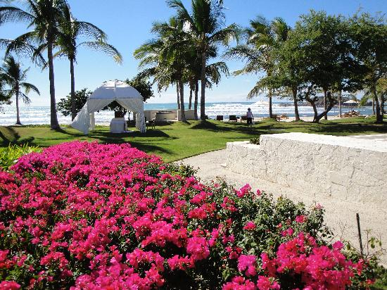 The St. Regis Punta Mita Resort: St Regis