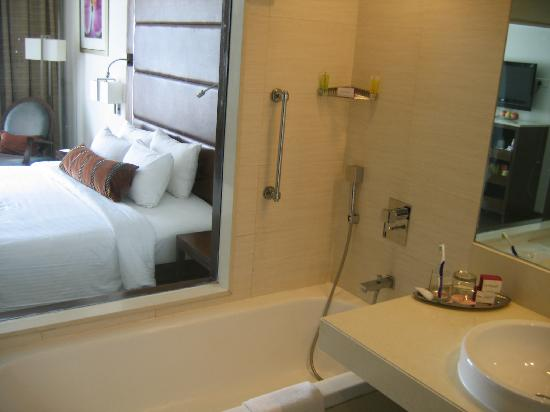 Royal Orchid Central Pune: Pune Orchid Central Deluxe Rm 714 bath