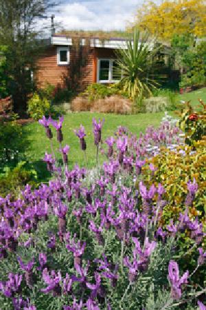 Joya Garden & Villa Studios: garden studio exterior