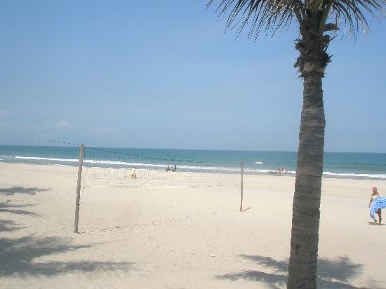 Palm Garden Beach Resort & Spa: volleyball court and beach.