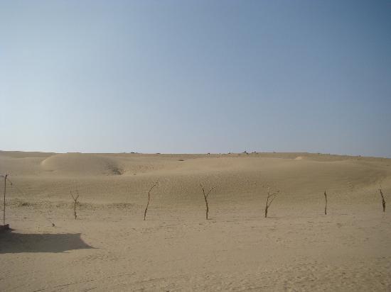 Moonlight Khuri Resort : view of sand dunes from tent