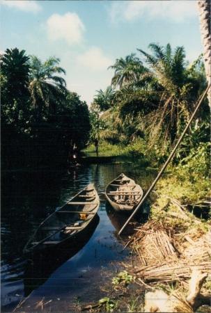 Λάγος, Νιγηρία: Jungle Transport