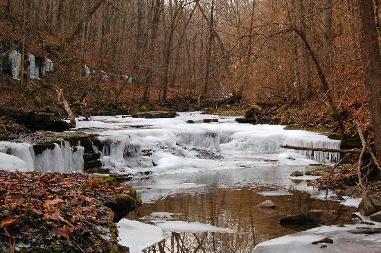 Raven Run Nature Sanctuary: Ravens Run Jan. '10