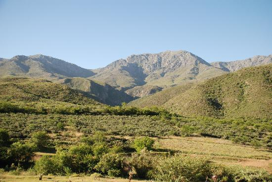 Calitzdorp, South Africa: The view from our room