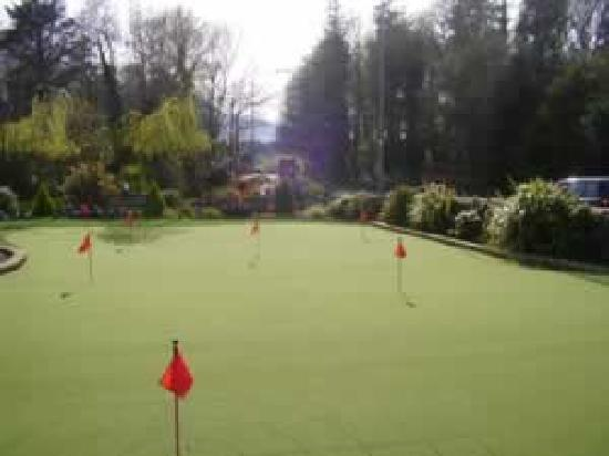 Augusta Lodge : All weather Synthetic Ptting Green