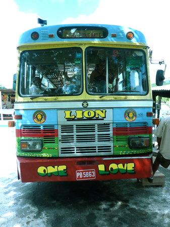 Chukka Caribbean Adventures - Tours: The Zion Bus