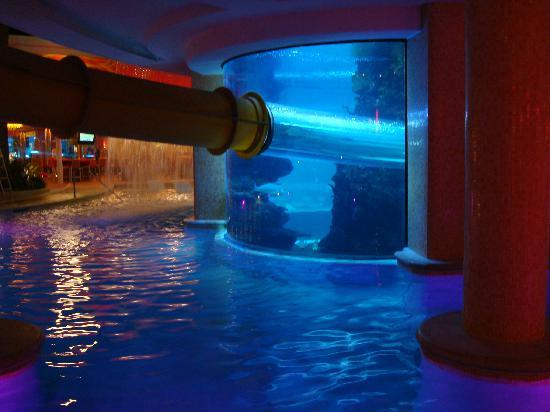 Fremont street experience picture of golden nugget hotel las vegas tripadvisor for Indoor swimming pools in las vegas