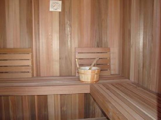 Residence Bellevue Guesthouse: original Finish Sauna