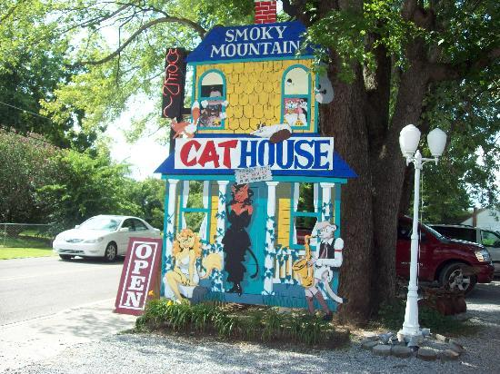 Smoky Mountain Cat House: cat house sign