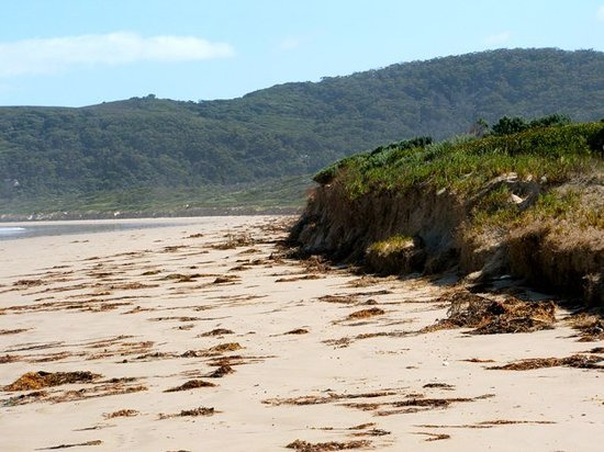 Wilsons Promontory National Park, Australië: Norman Bay Beach