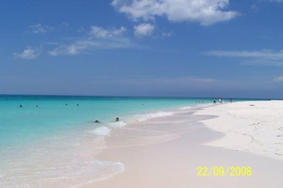 Eagle Beach : Punta Brabo