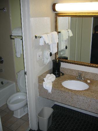 Best Western St. Augustine I-95: Bathroom