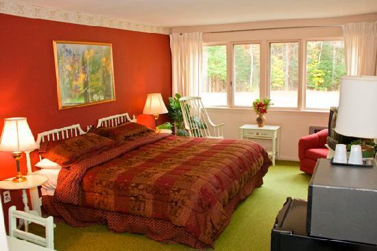 Snowdon Chalet: Room