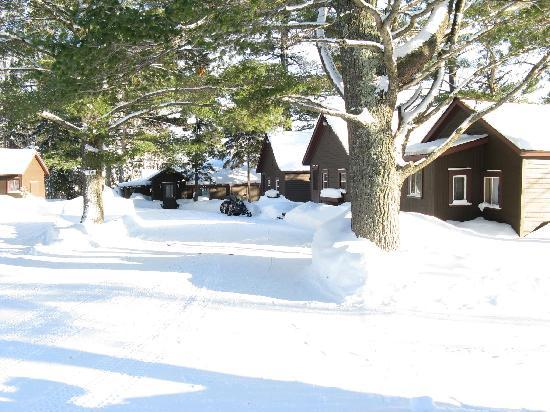 Lake Fanny Hooe Resort & Campground: Our sleds right in front of our cottage!