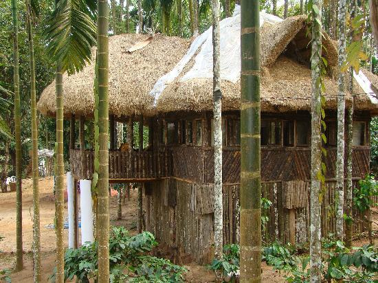 Shanthi Kunnj Homestay: cottage from coffee plantation
