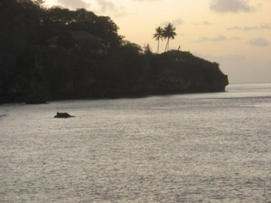 Sunset at flying fish cove picture of christmas island for Flying fish cove christmas island